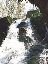 with nature beautiful surroundings  -  Døndalen