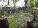 Troldskoven Bornholm